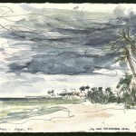 jwsc_landscapes_wc_storm naples fl 1-02