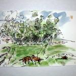 jwsc_wc_horsesonfarm_52000