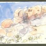 wolfschlossberg-cohen_jay_ce1_landscape_wc_joshua tree 99_550x750