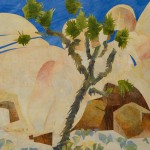 wolfschlossberg-cohen_jay_landscape_acrylics_joshua_tree_intimate_cap_rock_detail_2_12ft x13ft